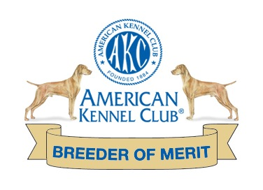 Boulder Vizslas AKC Breeder of Merit