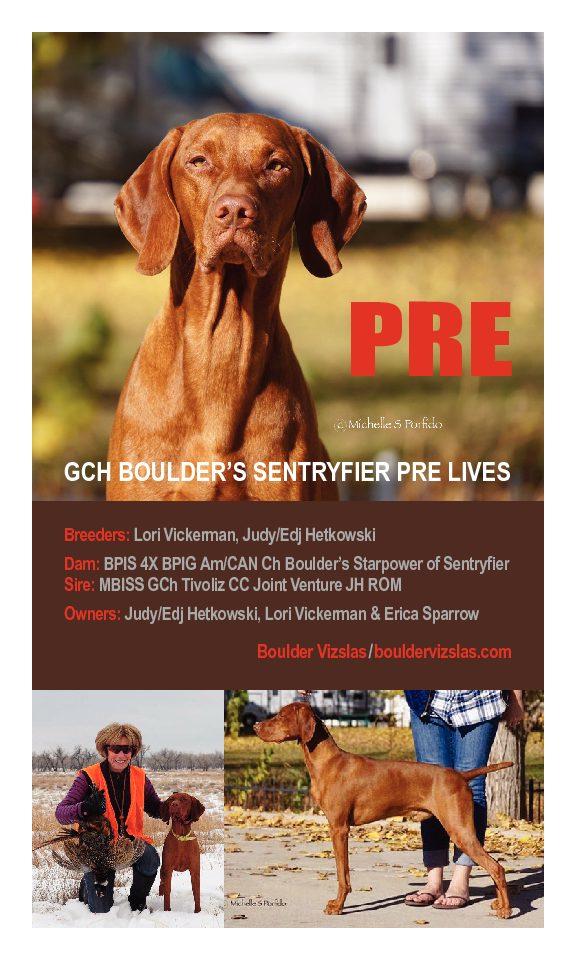 GCh Boulder's Sentryfier Pre Lives
